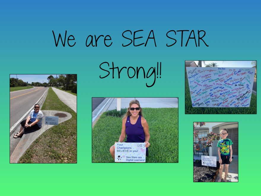 We are SEA STAR Strong!
